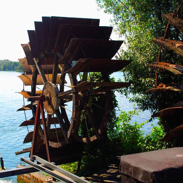 parco-fiume-sile - B&B Centro della Famiglia Treviso